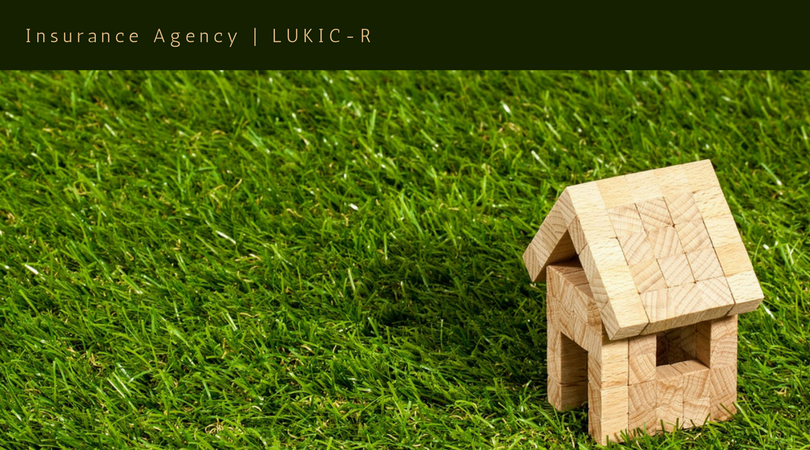 Insurance Agency - LUKIC-R